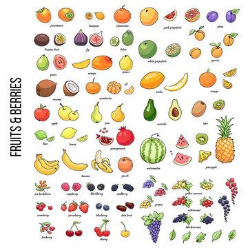 FruitsShutter2