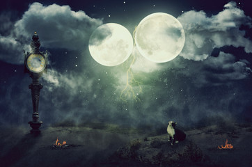 Cat looks up two moons