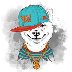 The poster of the sakita inu dog portrait in hip-hop hat. Vector illustration.
