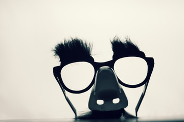 Funny Disguise