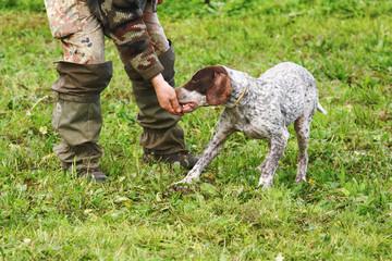 addestramento cani alla ricerca del tartufo