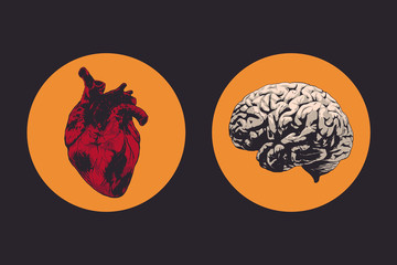 heart and brain vector isolated illustration