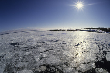 Winter sun and ice floe in the st-Lawrence Estuary