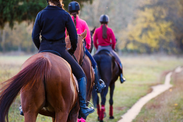 Foto op Plexiglas Paardrijden Group of teenage girls riding horses in autumn park. Equestrian sport background with copy space