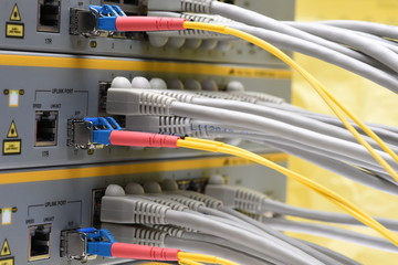 Network cable connected to network switch in data center