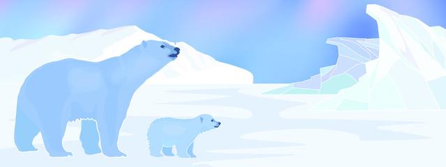 Arctic background