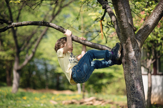 Little boy facing challenge trying to climb a tree. Shallow depth of field.