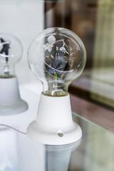 lightbulb on glass shelf