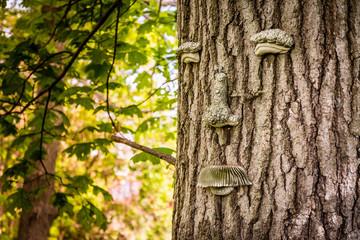 Green Man on Tree