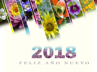 New Year's card 2018 with floral motif in Spanish