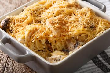 Tetrazzini is an American dish. Spaghetti with chicken, mushrooms and parmesan macro. horizontal