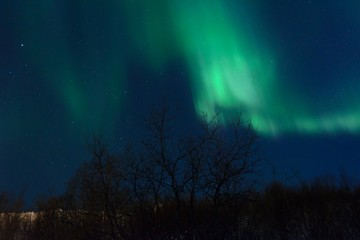 The Northern lights ,Aurora the night over the hills and forest.