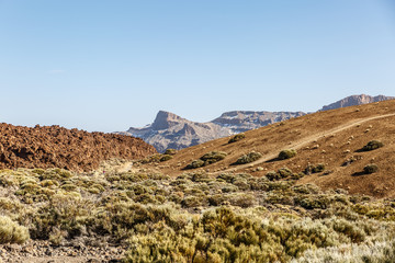 Characteristic landscape of the Teide natural park in Tenerife, Canary Islands
