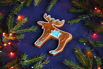 gingerbread cookie - moose in the spruce branches on blue