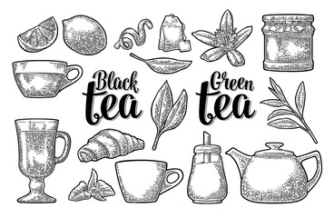 Set tea with lettering. Vector vintage engraving