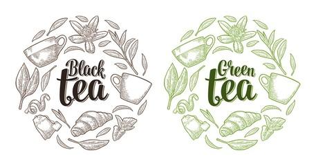 Set with lettering Black Green Tea. Vector vintage engraving
