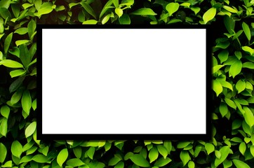 blank advertising billboard or television screen with green tropical leaf plant nature background, copy space for display of product presentation, commercial and marketing concept