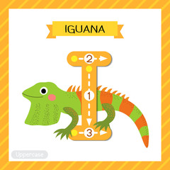 Letter I uppercase cute children colorful zoo and animals ABC alphabet tracing flashcard of Iguana for kids learning English vocabulary and handwriting vector illustration.