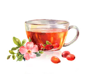 Glass mug of herbal tea. Drink rosehip tea. Beautiful watercolor drawing. Taste of the tea
