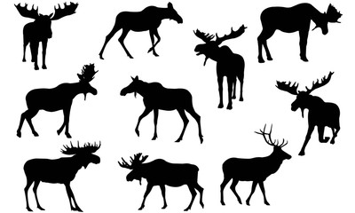Moose Silhouette Vector Graphics