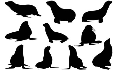 Pinniped Silhouette Vector Graphics