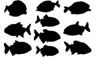 Piranha Silhouette Vector Graphics
