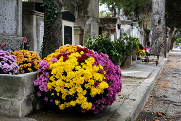 Tombe fleuri