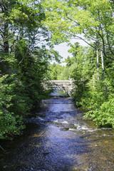 The 90 Year Old Bridge