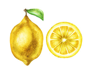 Watercolor lemon pair illustration in high resolution.