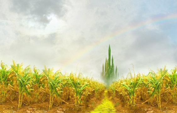 yellow brick road through cornfield