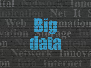 Information concept: Painted blue text Big Data on Black Brick wall background with  Tag Cloud
