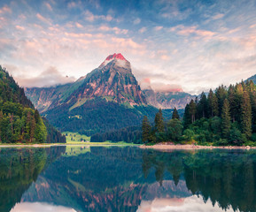 Misty summer landscape on the Obersee lake