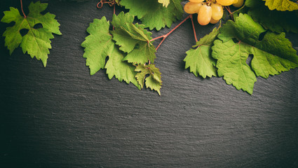 White grape and fresh grape leaves on black background, copy space