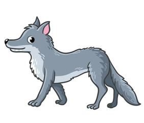 Cute wolf on a white background. Vector illustration with a predator. An animal in the cartoon style.