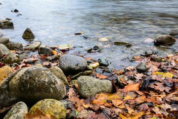Steine im Wasser mit orangen laubglätter am Ufer