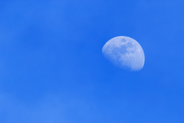 Day Gibbous Moon