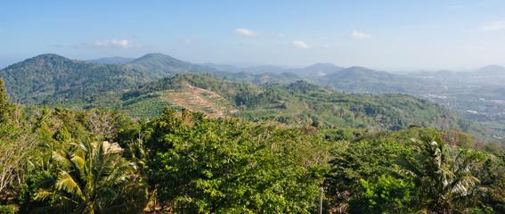 tropical jungles in Phuket Thailand, panoramic view