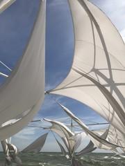 сильный ветер развевает белые паруса на корабле в море