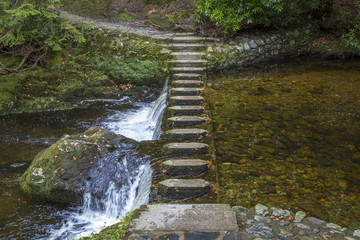 Stepping Stones im Tollymore Forest Park, Nordirland