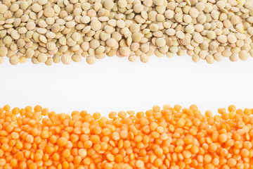 Two types of lentils - Lens culinaris