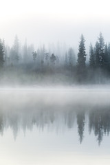 Mist Engulfs the Forest on the Shore of Elk Lake During Sunrise in Central Oregon