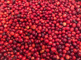large amount of fresh red cranberries at the market