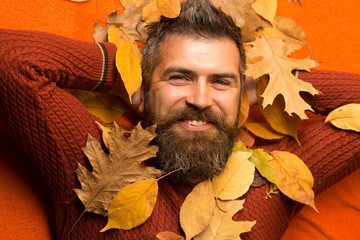 man with autumn leaves and beard on happy face