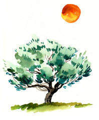 Watercolor olive tree