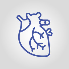 Anatomical real heart isolated flat vector linear icon