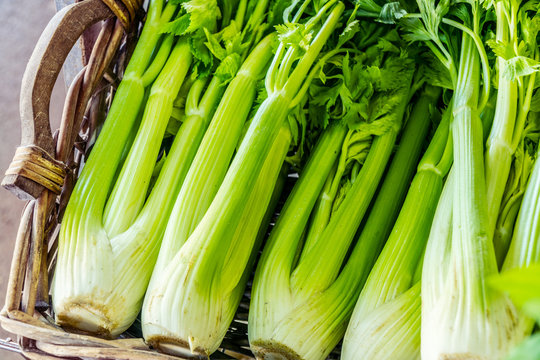 Heads of celery. Close-up.