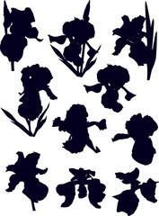 ten black iris silhouettes