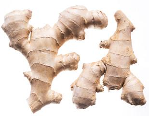 Fresh ginger rhizome or ginger root. Isolated on white background.