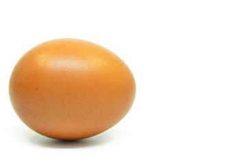 Single chicken egg