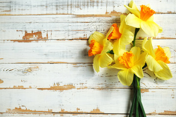Poster Narcisse Beautiful spring yellow narcissus on white wooden background, Space for text,
